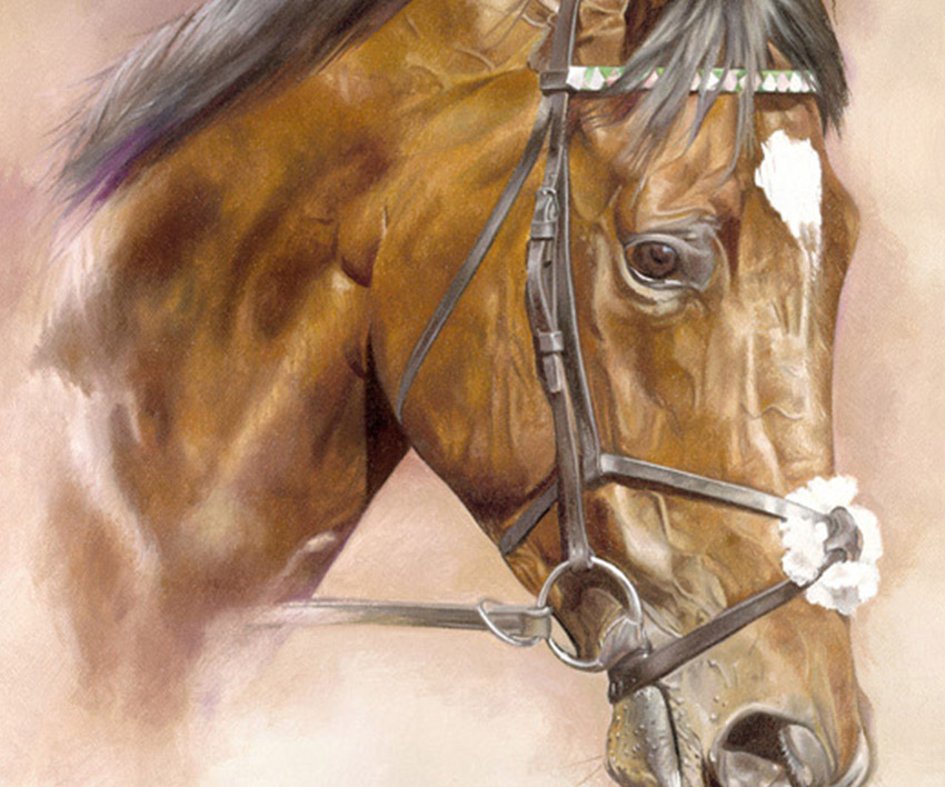 Frankel – Head Study  by Joanna Stribbling
