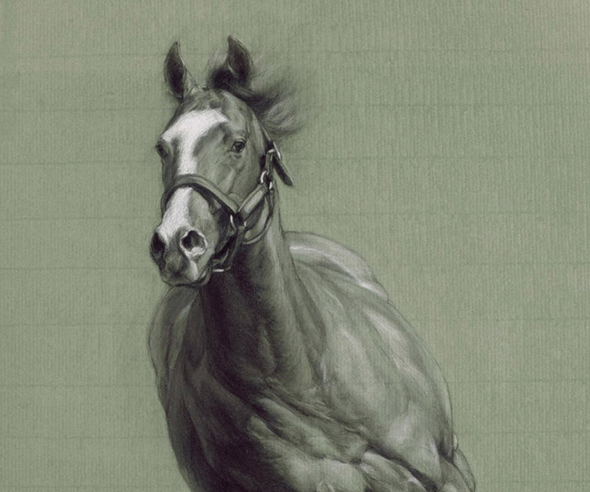 Movement – Study of Horse In Movement  by Nichola Eddery